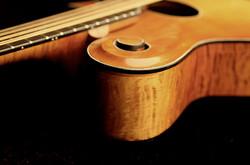 Mando-Cello Side View #1