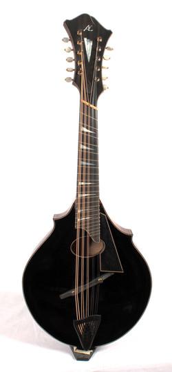 10 String 06