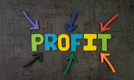Can My Nonprofit Be Profitable?