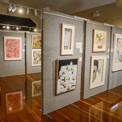 Visual Arts in the Valley