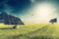 pannels dans l'herbe