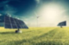 pannelli in erba