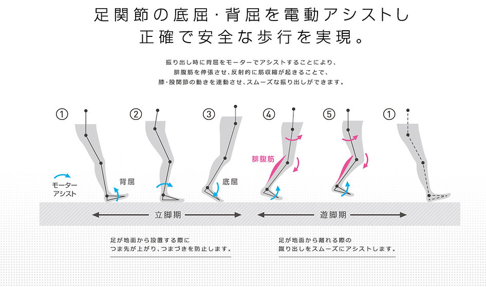 足関節の底屈・背屈を電動アシストし、正確で安全な歩行を実現