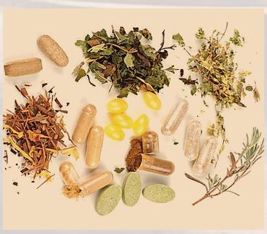 Plant Medicine Healing
