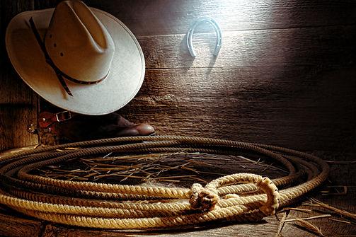 Cowboy hat, horseshoe and lasso