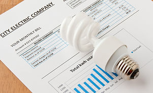 Energy efficient and incandescent  bulbs