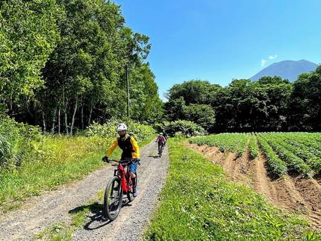 ニセコエリアのレンタルバイクショップを紹介!