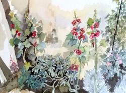 Roses trémiaires