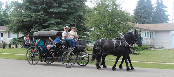 Horse, carriage, Visa V