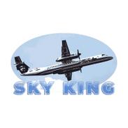 Sky King.png