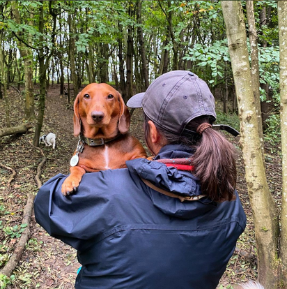 Carrying a tired sausage dog