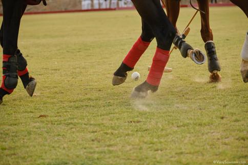 DSCF3491Vijay-sawnani-photography-sport-