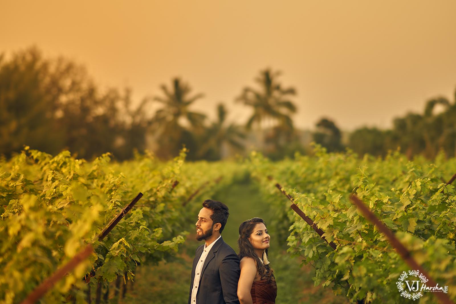Pre Wedding Photoshoot   Nashik