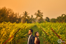 vjharsha photography| pre wedding | udaipur.jpg