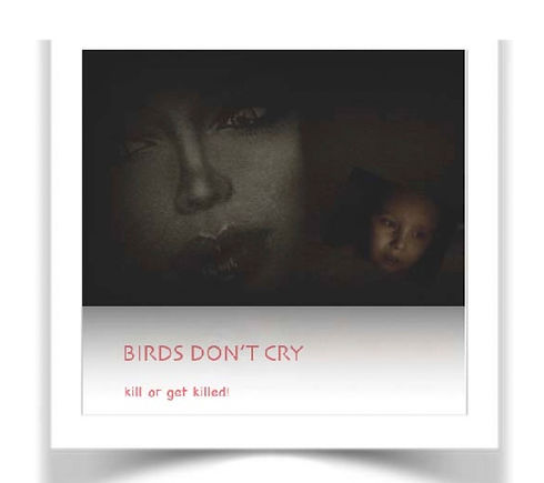 Birds Don't Cry_edited.jpg
