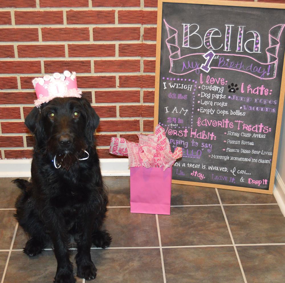 Dog Birthday Chalk Board