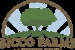 logo-bicco