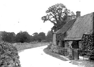 Cottage on The Lane