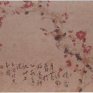 홍매/紅梅/Red plum tree