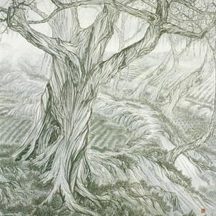 나목/裸木/A bare tree