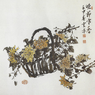 국화/菊/Chrysanthemum