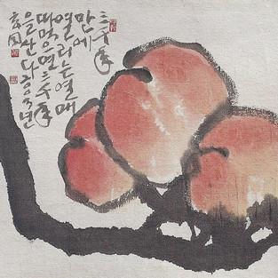 열매/實果/Fruit