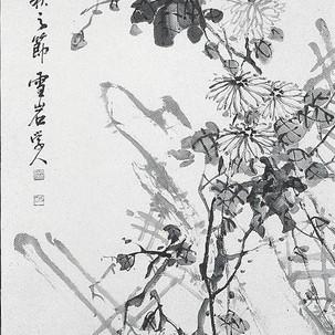 묵국/墨菊/Chrysanthemum