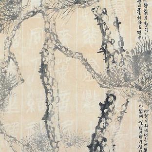 소나무/松/Pine tree