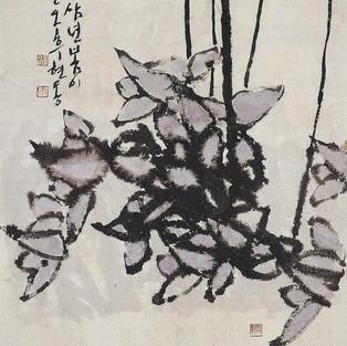 춘화/春花/Spring flower