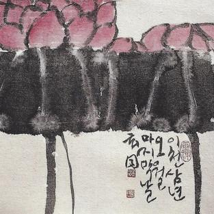 연/蓮/Lotus
