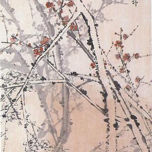 매화/梅花/Plum tree flowers