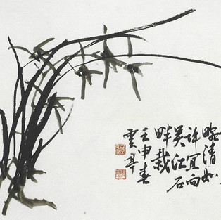 묵난/墨蘭/Orchid