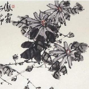 국/菊/Chrysanthemum