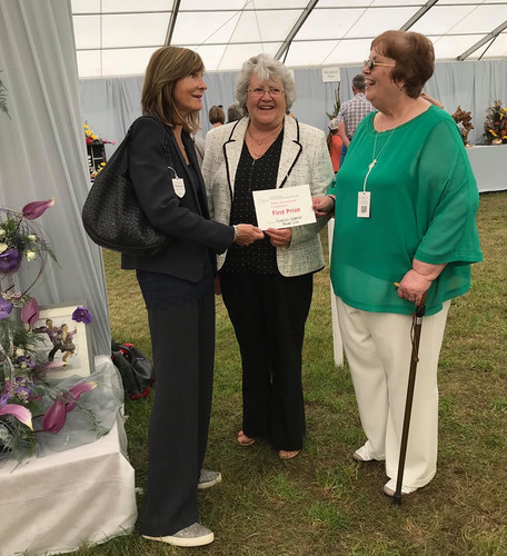 Haverhill Flower Club Exhibitors and win