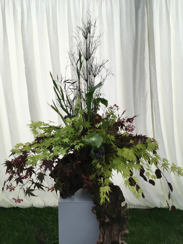 TOP OF PEDESTAL CLASS Best use of Garden