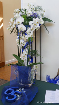 Blue Sapphire Show - Welcome-1