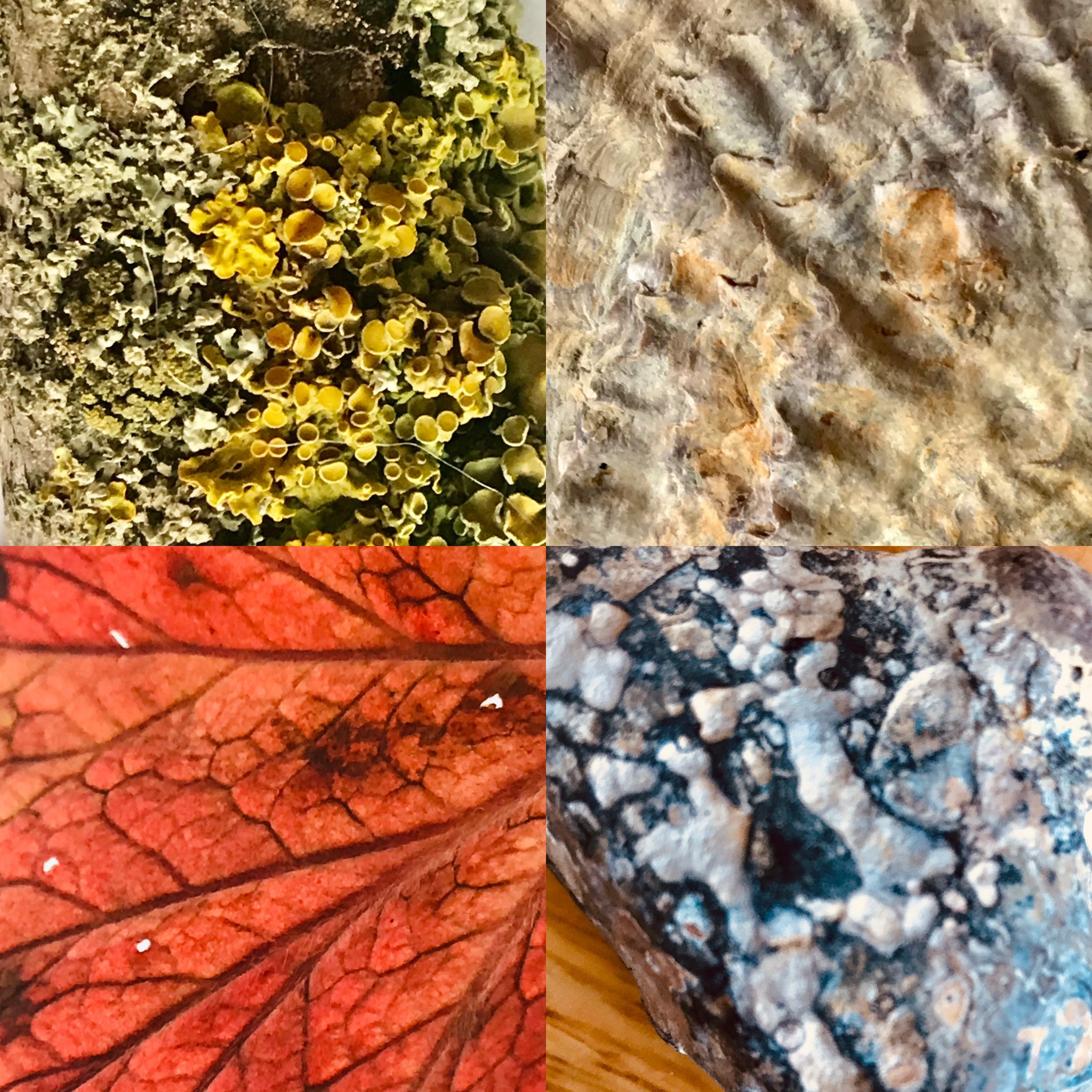 Art Textile Course #1- AM