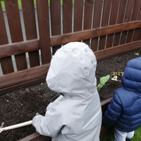 Children planting in our allotment