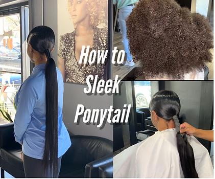Sleek Ponytail.png