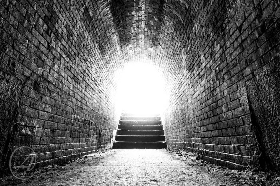 INTO THE FORT LIGHT