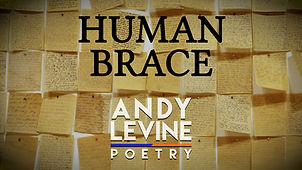 Human Brace YTT.jpg