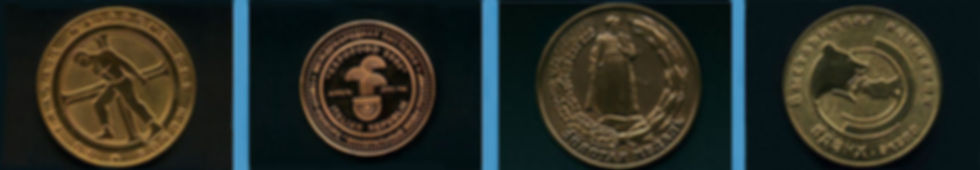 medal2019.jpg
