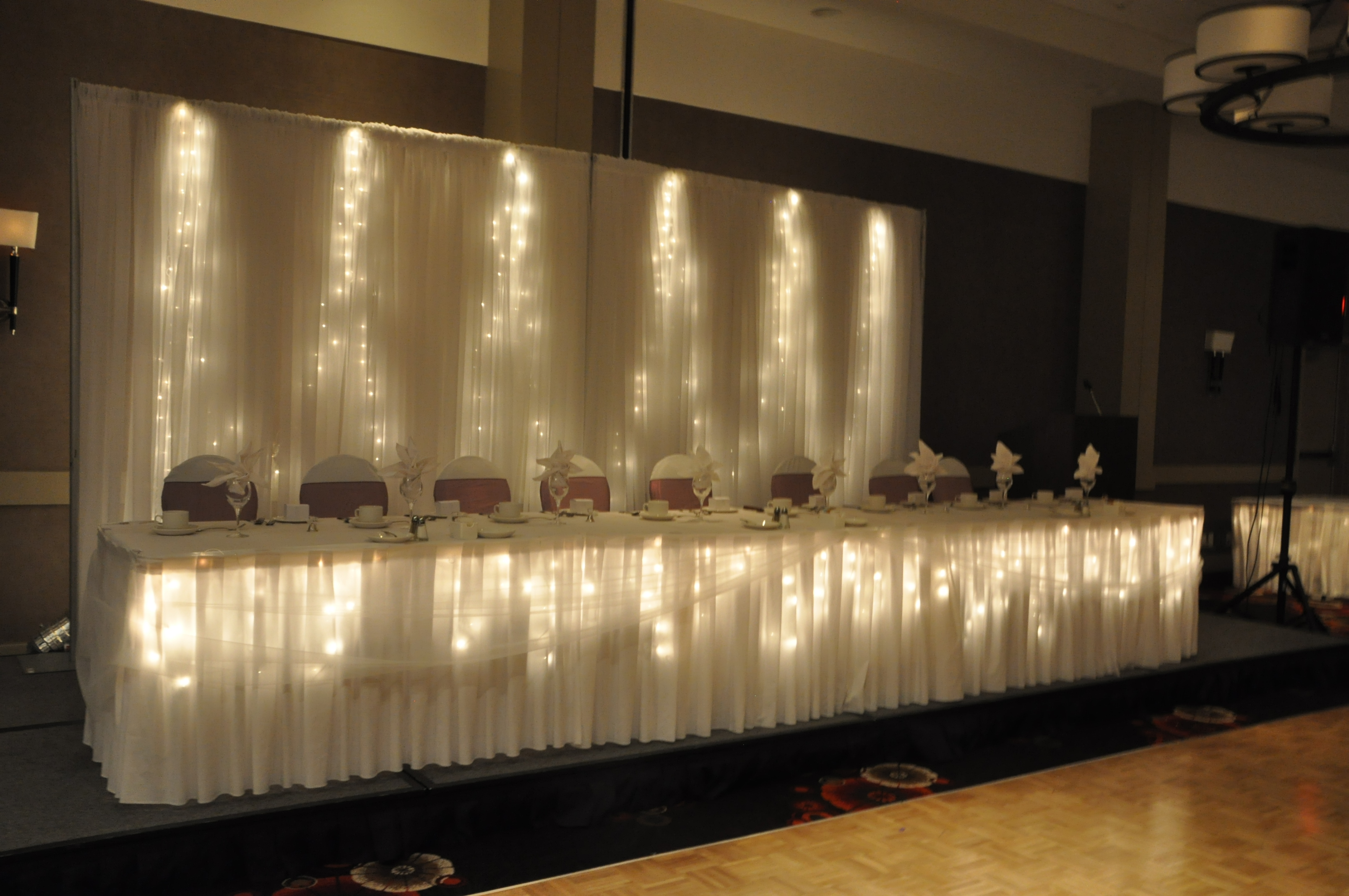 Back Drop, Lights, Wedding Rentals