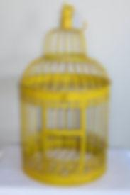 Card Box, Bird Cage, Wedding Rentals