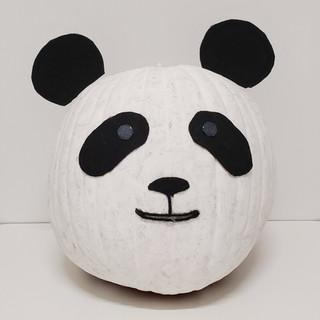 #1: An Amazingly Cute Panda