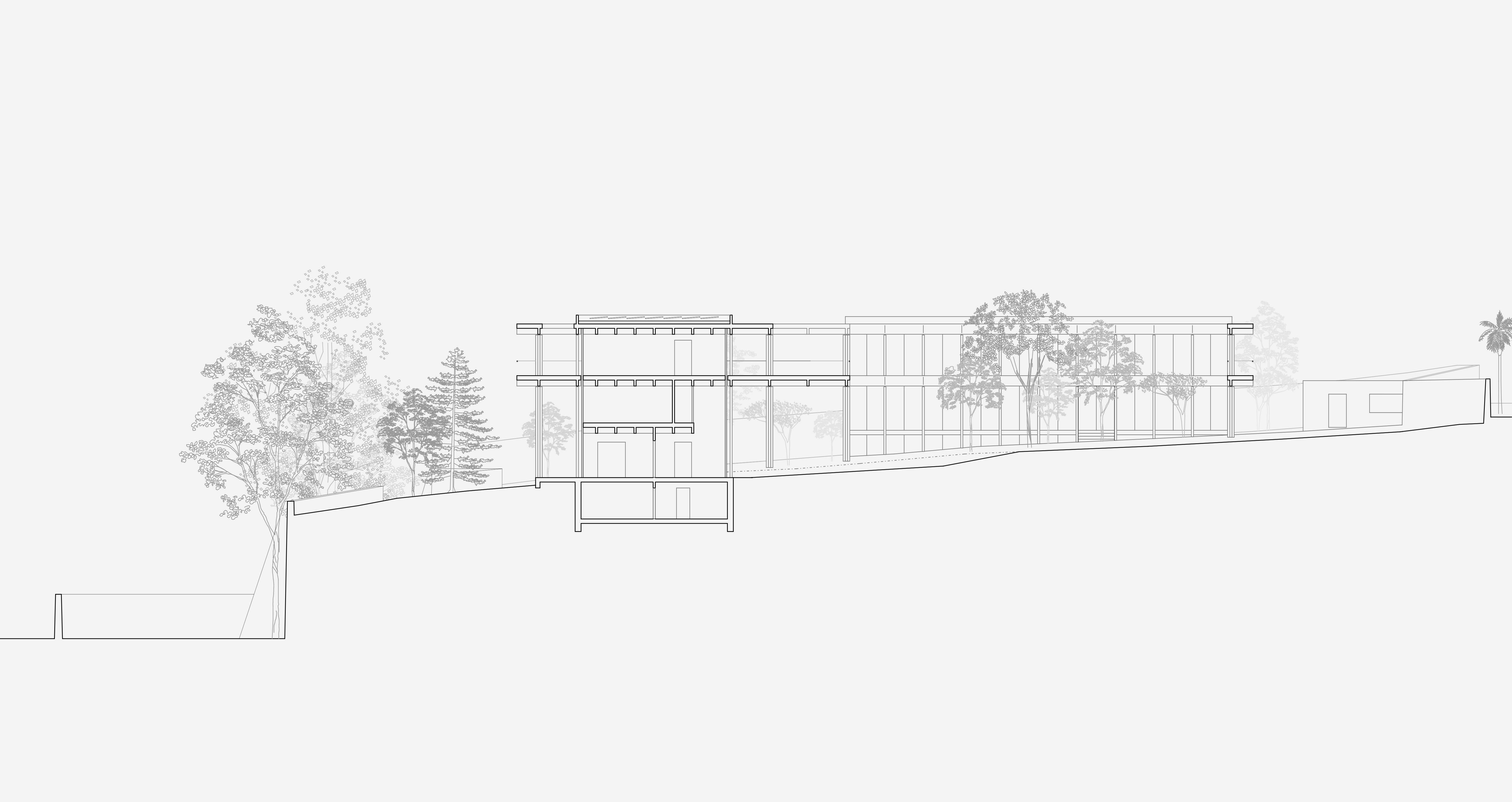 Neubau Schweizerische Botschaft Addis Abeba: Längsschnitt