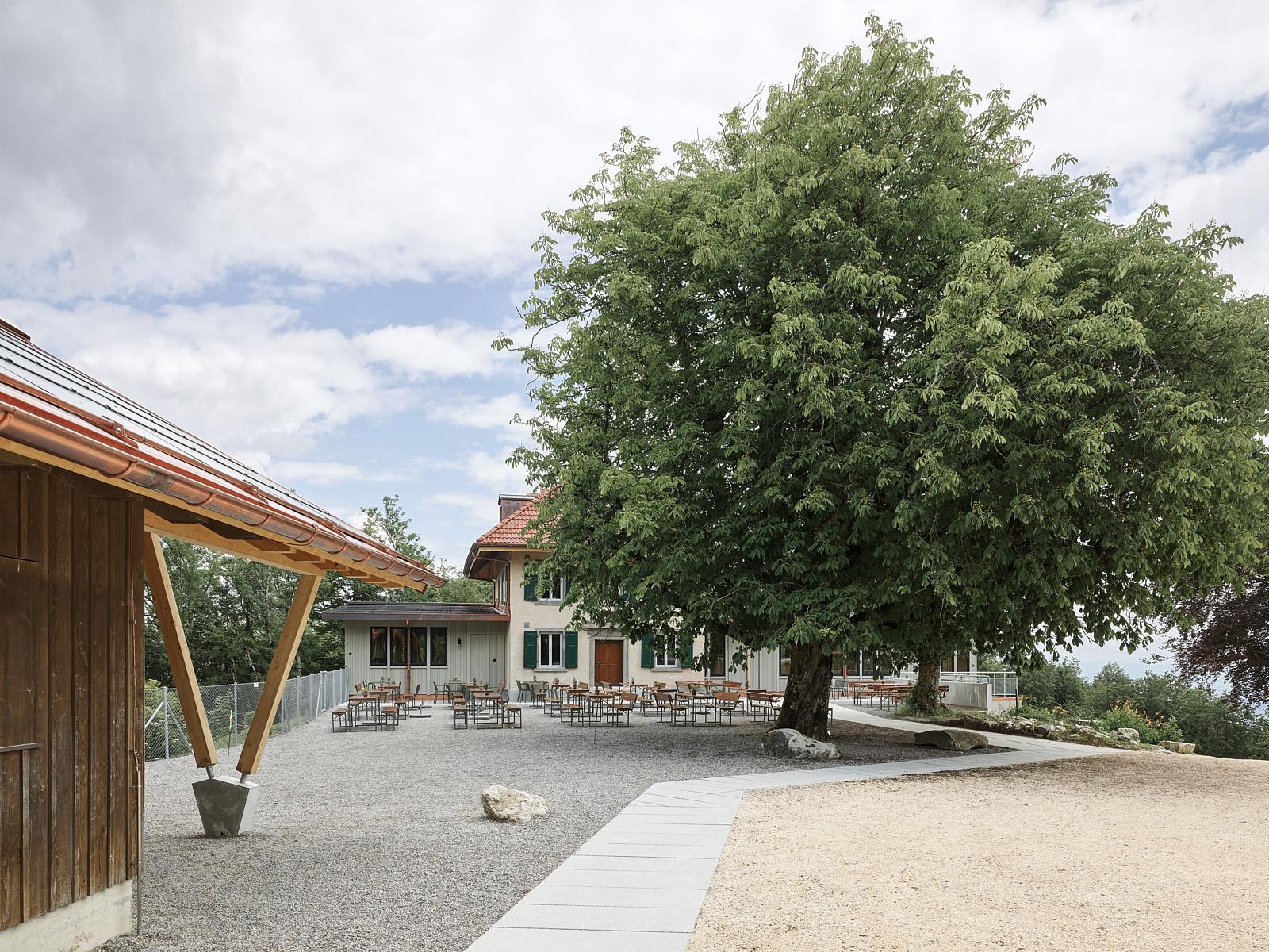 Sanierung Bergrestaurant Lägern Hochwacht: Blick von der Waldschenke (Bild Georg Aerni)
