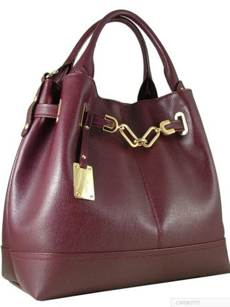Carbotti Chloe Elegant Bucket Bag (Burgundy)