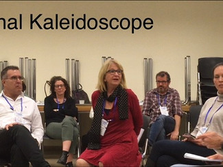קליידוסקופ ארגוני - Organizational kaleidoscope