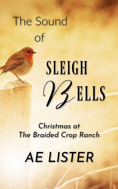 Sleigh Bells copy.jpg